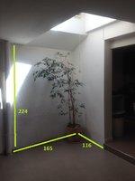 IMG_0303_avec mesures.jpg