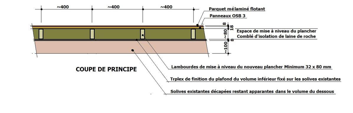- Plancher Tanguy.jpg